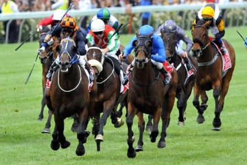 How to bet on horses A beginner s guide