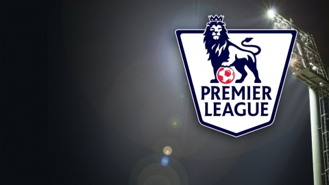 Betting Tips for the England Premiere League 2013/2014